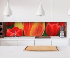 Autocollant Crédence de Cuisine Fleurs Tulipes Jaune Rouge Film Déco ...