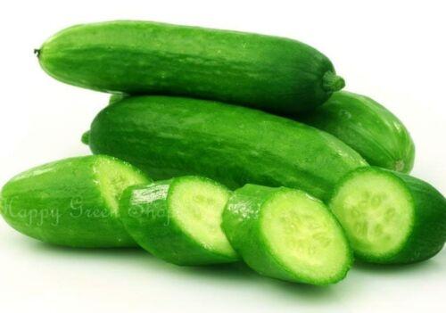 Vegetale Cetriolo F1-Re di insalata 100 Semi Serra//Outdoor NO scuoiatura