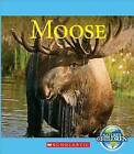 Moose by Josh Gregory (Hardback, 2015)