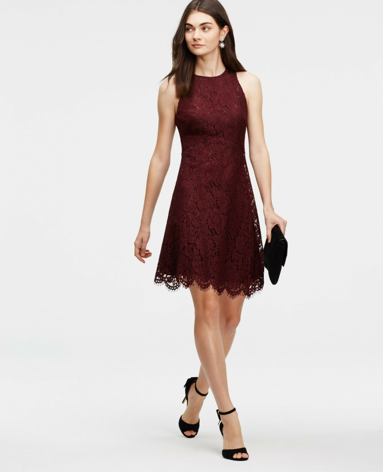 Brand New Ann Taylor Petite 0 Lace Flare Dress Dress Dress with tag - Classic Plum 1acacc