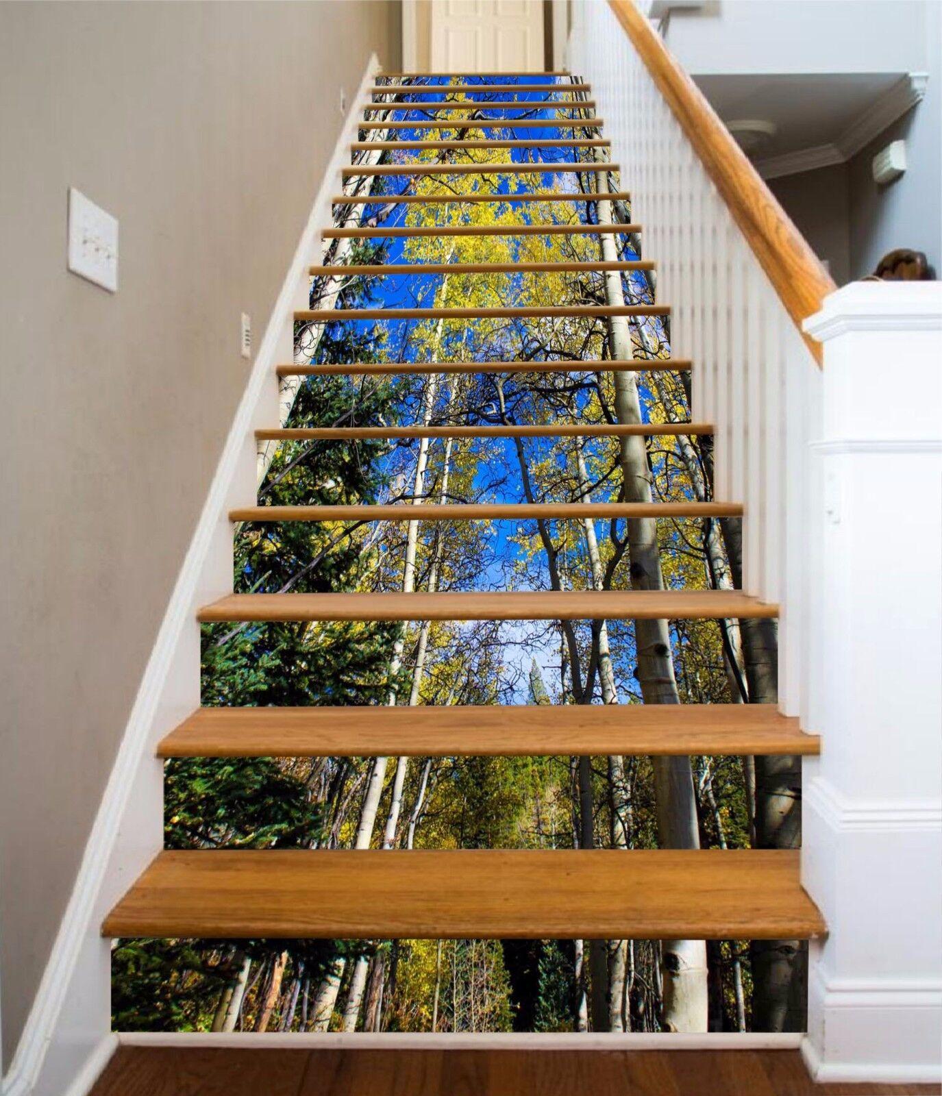 3D Sky Grove Stair Risers Decoration Photo Mural Vinyl Decal Wallpaper AU