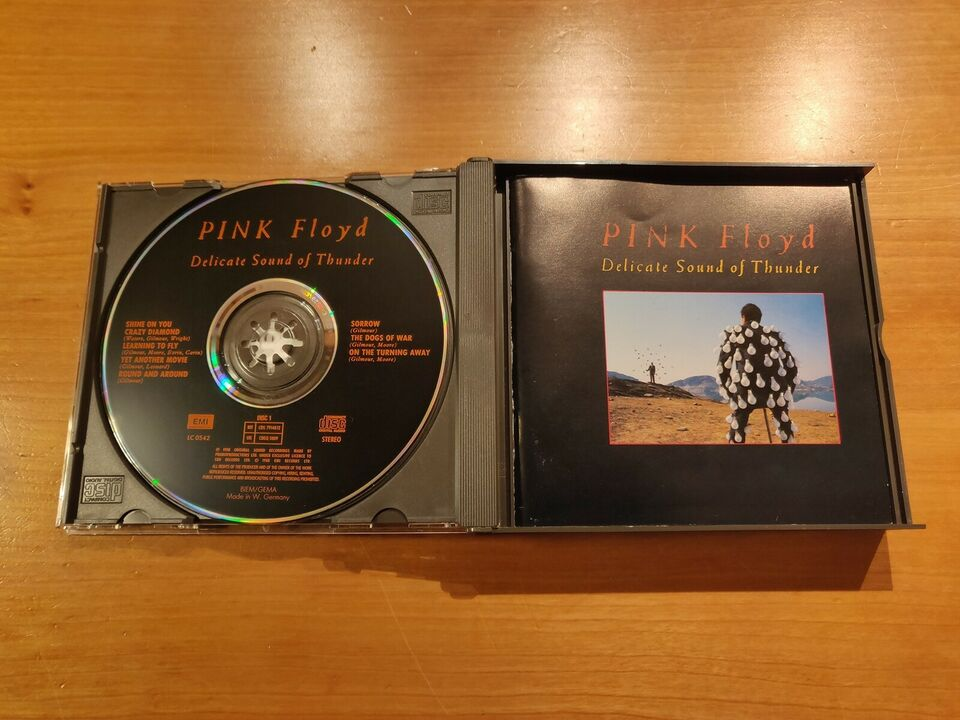 Pink Floyd: Delicate Sound of Thunder, rock