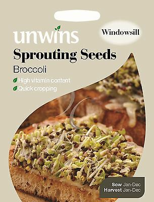 Unwins Pictorial Packet - Vegetable - Sprouting Seeds Broccoli - 2500 Seeds