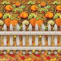 Fall Autumn Thanksgiving Party Decoration Pumpkin Patch Backdrop Photo Prop