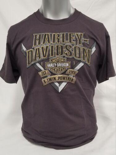 """New Harley Davidson Men/'s Dealer Tee /""""HD V/"""" P//N 2908"""