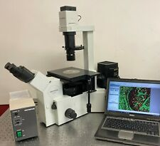 Olympus Microscope Ix 50 Inverted Fluorescence Phase Contrast 10mp