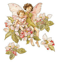 Flower Fairies Fairy Magic 25 Apple Blossom Wallies Flowers Stickers Wall Decals