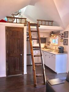 Rustic Pine Library Ladder Loft Half Log Cabin Attic