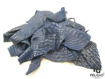 PELGIO Real Genuine Crocodile Skin Leather Hide Pelt Scraps 100 g Blue Free Ship