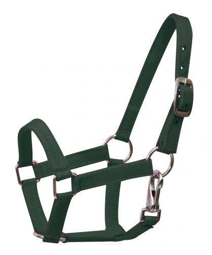 MINI Size Nylon Adjustable Horse HALTER Nickel Plated Hardware /& Throat Latch