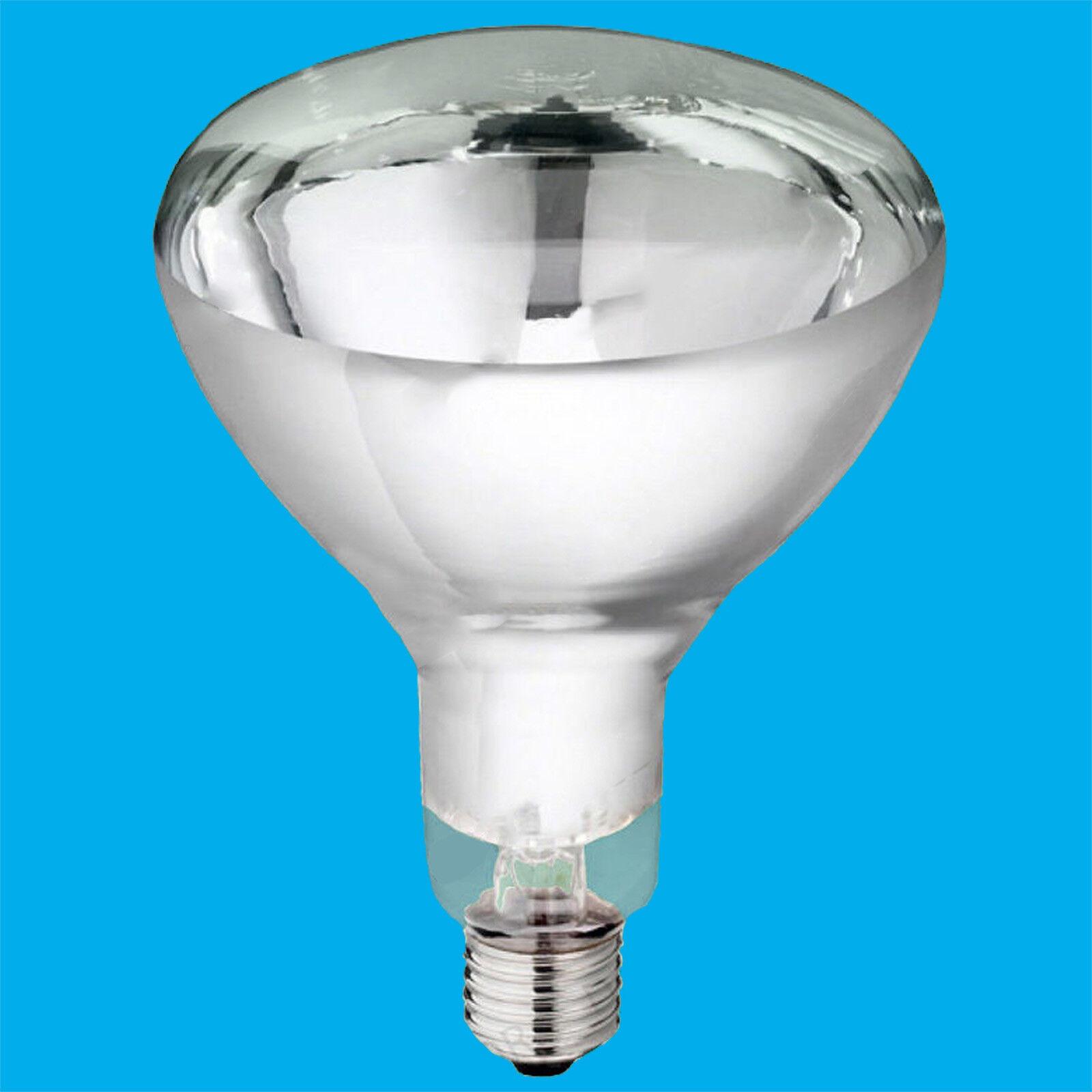 10x 250W ir lámpara de calor, servicio de alimentos, pantalla de catering, Bombillas de infrarrojos
