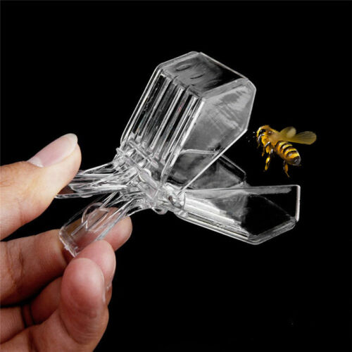 Plastic Beekeeping Bee Catcher Tool Queen Clips Bee Catcher Cage Beekeeper Equip