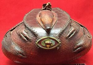 104066ad25d3 Image is loading Real-Taxidermy-Armadillo-Purse