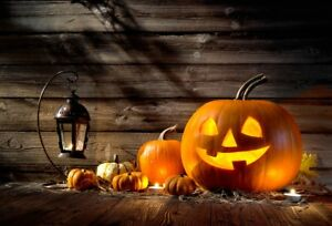 image is loading halloween backdrop carved pumpkin photography background 7x5 studio