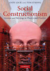 Social Constructionism: Sources and Stirrings in Theory and Practice by Tom Strong, Andy Lock (Paperback, 2010)