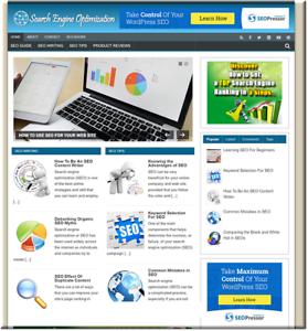 SEO-Niche-Turnkey-Website-Business-earn-from-affiliate-adsense