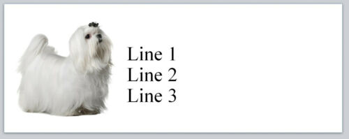 p 776 Personalized Address labels Shih Tzu Dog Buy 3 get 1 free