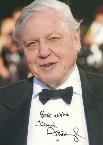 Sir David Attenborough Autograph Photo PRINT 7x5 Naturalist Blue Planet 2