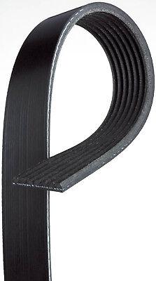 Gates K060450 Multi V-Groove Belt