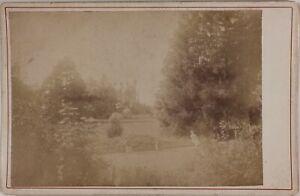 Giardino-Foto-Cartolina-Armadio-P15Ln17-Vintage-Albumina