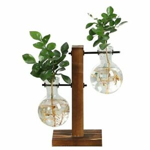 Fleur-Propagation-Station-New-Glass-Vase-Decor-Display-Home-Plant-Decorative
