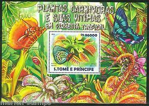 SAO-TOME-E-PRINCIPE-2015-CARNIVOROUS-PLANT-OF-THE-TROPICAL-RAINFOREST-S-SHEET