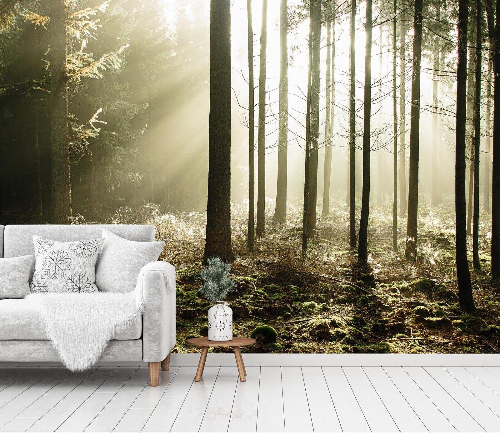 3D Sunshine Forest 76 Wallpaper Mural Paper Wall Print Murals UK Jenny