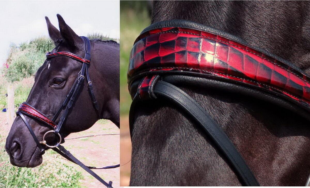 FSS Mock Cocodrilo Rojo Ombre curva alemán comodidad patente Brillo cuadrado se expandía Brida