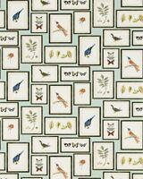 Sanderson Feature Wallpaper Picture Gallery 213400 Aqua Birds Butterflies Frames
