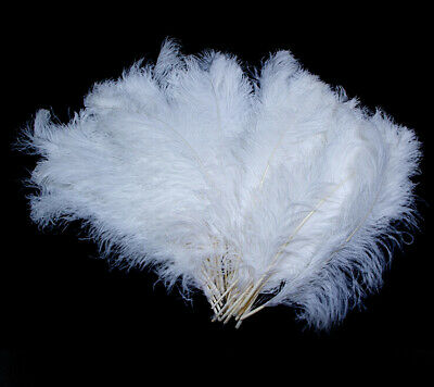 Wholesale!10-50-100 PCS Naturally OSTRICH FEATHERS 6-18 inches//15-45cm wedding