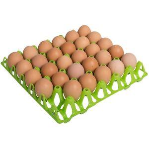 Eierhorden-Eier-Eierverpackungen-Huehner-Gefluegel-10-Stueck