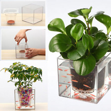 Garden Fish Tank Clear Self-watering Pot Wall Planter for Office Home Decor NEW