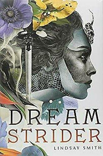 Dreamstrider von Smith, Lindsay