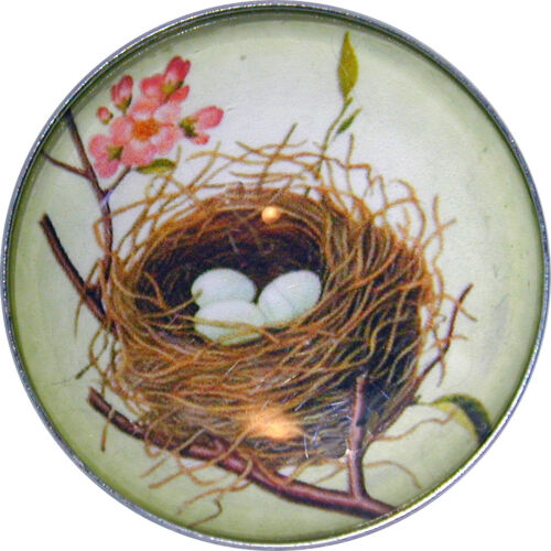 Crystal Dome Button Bird/'s Nest /& Eggs green NST3  FREE US SHIPPING
