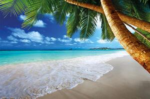 Sandstrand-mit-Palmen-und-Meer-Fototapete-Paradies-Wandbild-XXL-Beach-Wanddeko