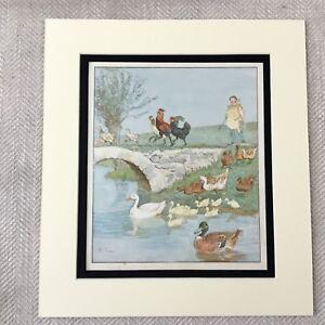 1885-Antique-Print-Farm-Animals-Ducks-Chickens-Duckling-Victorian-Original