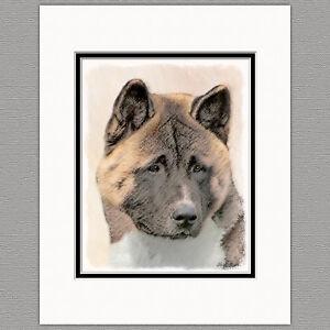 Akita-Dog-Original-Art-Print-8x10-Matted-to-11x14