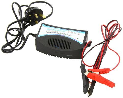 12v Coche Cargador De Batería Carga Lenta Para Almacenamiento Automático CORTE ciclo profundo