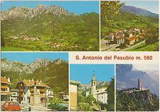 S.ANTONIO DEL PASUBIO - VEDUTINE - VALLI DEL PASUBIO (VICENZA) 1988