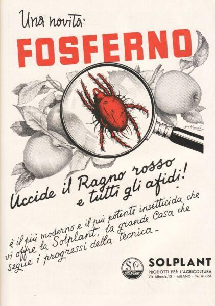 100% Vero Pubblicita' 1949 Fosferno Agricoltura Afidi Ragno Rosso Solplant A. Pomi Bianco Puro E Traslucido
