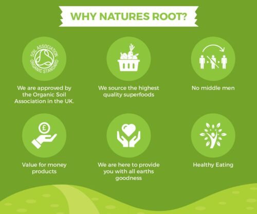 Natures Racine Organique Tournesol Sprouting Seeds 60 G125 G250 G500 G1 kg
