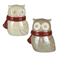 464149 Owl Northerlights Holder Salt Pepper Shaker Set Kitchen Decor Christmas