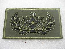 Norway Norwegian Army NAVY Badge EOD Master cloth subd.