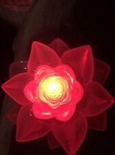 NEW Disney Animal Kingdom Rivers Of Light Lotus Glow Cube Light Up LED