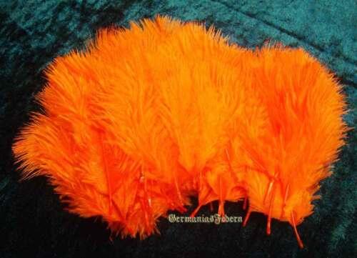 50 kleine orange Straußenfedern  5-10 cm basteln Streudeko