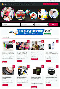 Details about Local Classifieds Website - Free Install + Hosting