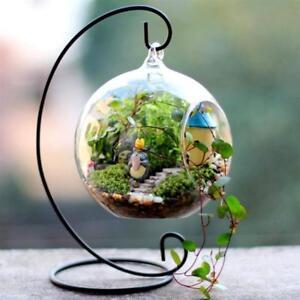 4-Pack-Med-Globe-Glass-Terrariums-Centerpiece-Wedding-DIY-Fairy-Garden-Decor