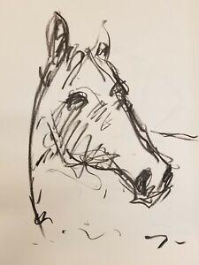 JOSE-TRUJILLO-Original-Charcoal-on-Paper-Sketch-Drawing-18X24-ART-Horse-Portrait