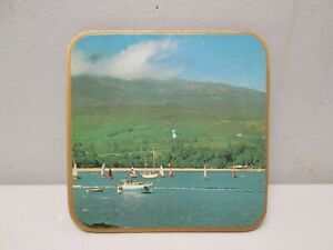 Lake-Scene-Wood-Coaster-w-Cork-Bottom-Decorative-Collectible