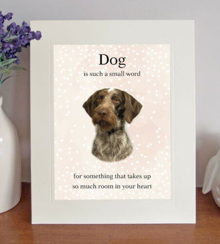 """German Wirehaired Pointer /""""Dog is such a small word/"""" 8x10 Picture//Print Fun Gift"""
